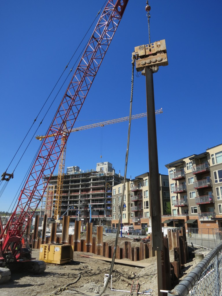 Office - sheet piling install