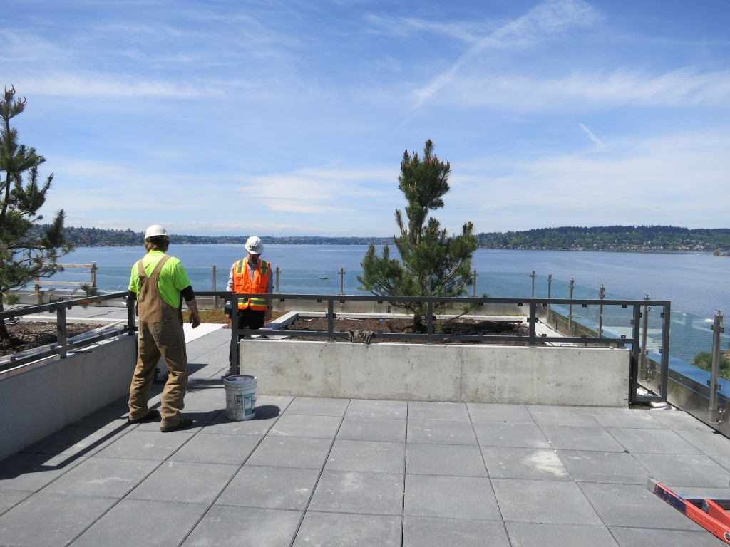 Hotel - Level 8 Terrace Planting and Screen Install