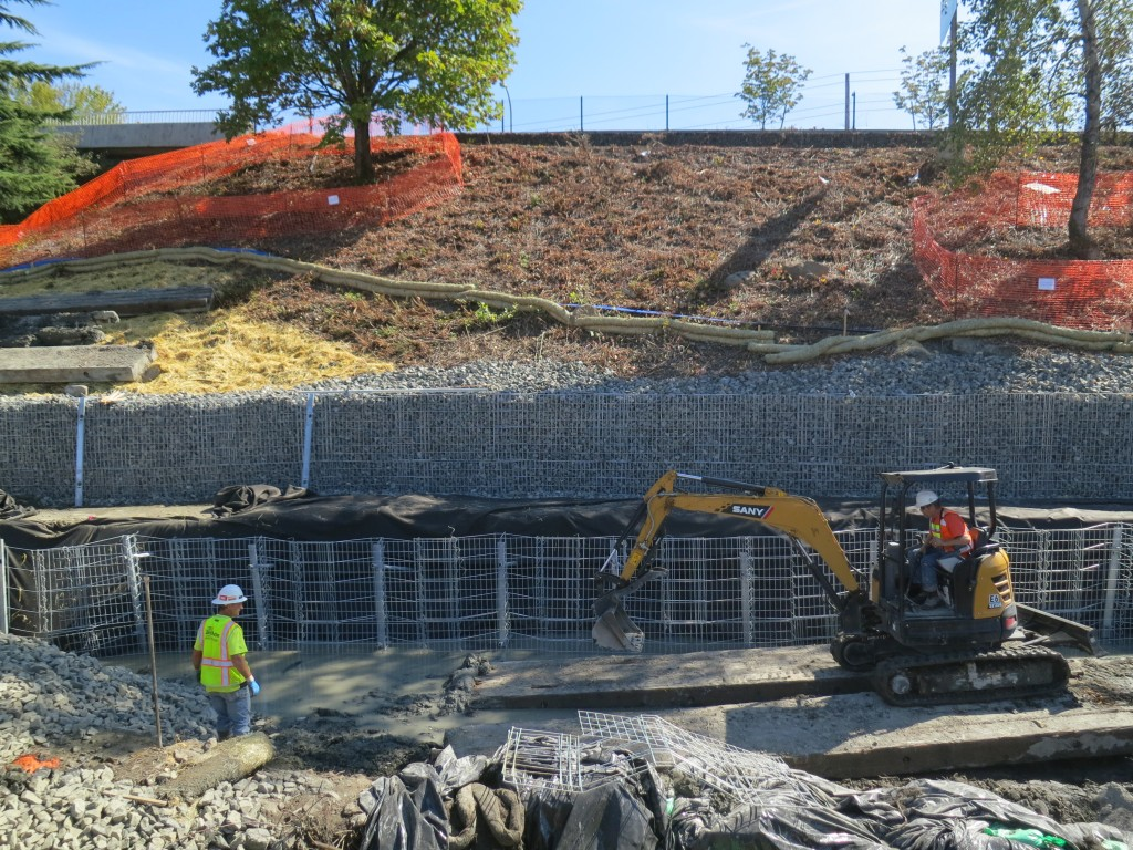 Lake Washington Blvd - Gabion Wall Install